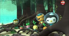 Les Octonauts : Octonauts du 7 mai 2018 – Replay TF1