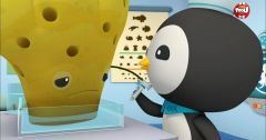 Les Octonauts : Octonauts du 16 mai 2018 – Replay TF1
