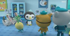 Les Octonauts : Octonauts du 7 mars 2019 – Replay TF1