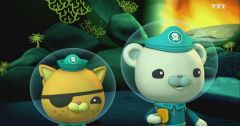 Les Octonauts : Octonauts du 12 mars 2019 – Replay TF1