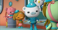 Les Octonauts : Octonauts du 13 mars 2019 – Replay TF1