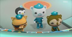 Les Octonauts : Octonauts du 19 mars 2019 – Replay TF1