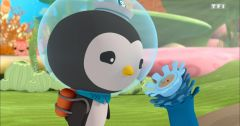 Les Octonauts : Octonauts du 21 mars 2019 - Replay TF1