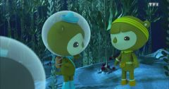 Les Octonauts : Octonauts du 22 mars 2019 - Replay TF1