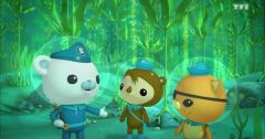 Les Octonauts : Octonauts du 16 mai 2019 – Replay TF1