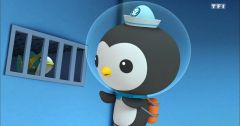 Les Octonauts : Octonauts du 17 mai 2019 – Replay TF1