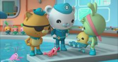 Les Octonauts : Octonauts du 20 mai 2019 – Replay TF1