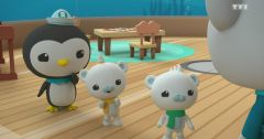 Les Octonauts : Octonauts du 21 mai 2019 – Replay TF1